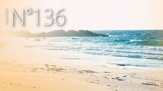 relaxdaily - Vinjevika [N°136]