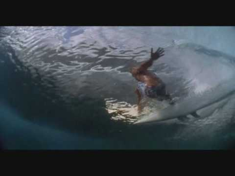 Surf Video RUSH by Dave Jacobs & The Prodigal Sons (footage from Dana Brown's 'Step into Liquid')