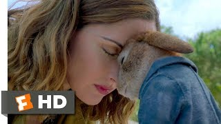 Peter Rabbit (2018) - Forgiveness Scene (10/10) | Movieclips