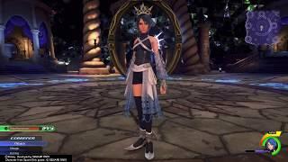 Kingdom Hearts 0.2 - Secret Boss Rush No Damage (Level 50 Critical Mode)