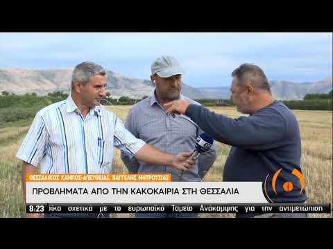 Προβλήματα από την κακοκαιρία σε Β. Ελλάδα και Θεσσαλία | 06/07/2020 | ΕΡΤ