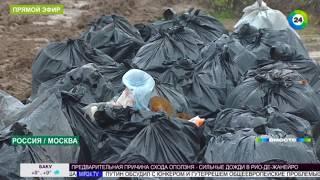 Пластиковая планета: как люди убивают Землю одноразовой посудой