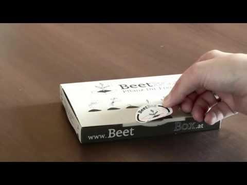 Beet-Box