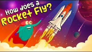 How Does A ROCKET FLY | How Do Rockets Work | ROCKET LAUNCH | The Dr Binocs Show | Peekaboo Kidz