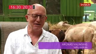 """Laidoje """"Vasara tiesiogiai"""" – laidų vedėjas Arūnas Valinskas"""