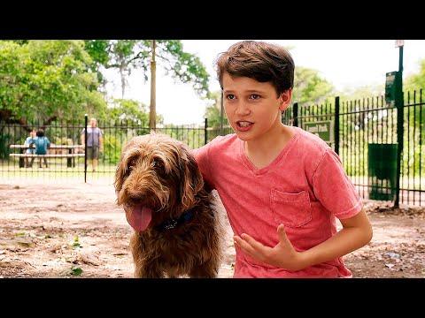 Думай как собака — Русский трейлер (2020)