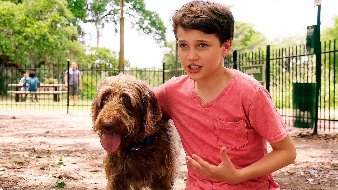 Трейлер семейной комедии «Думай как собака»