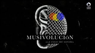 Musivolución - La música y el homosapiens