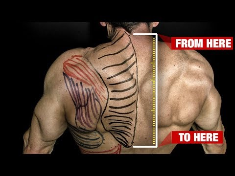 How to Get Bigger Traps