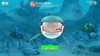 hungry shark world, great white (3D Motion)