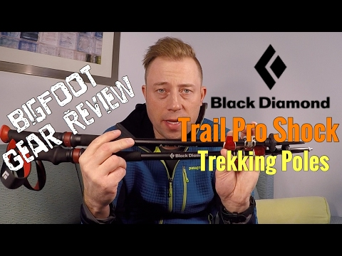 Black Diamond Trail Pro Shock Trekking Pole Review