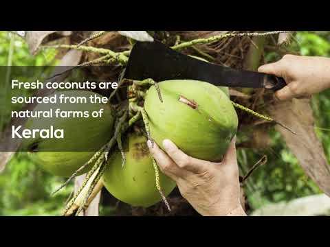 Cold Pressed Virgin Coconut Oil In Glass Jar Made From Coconut Milk