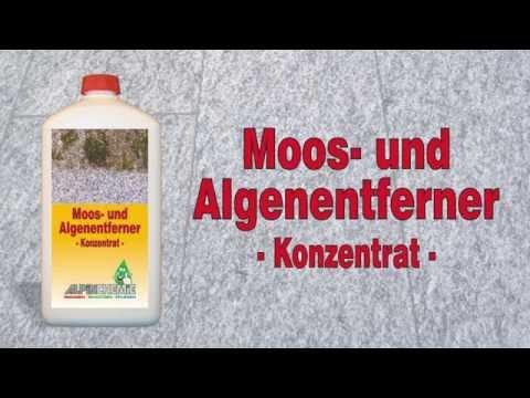 Moos- und Algenentferner Anwendung, z.B. Gehwegplatten, Terrassenplatten reinigen