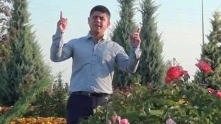 Ali Kırış Güller Açıyor Allah Dedikçe (2016 Orjinal Klip)