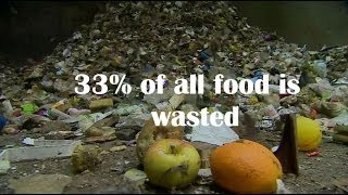 In 60 seconds: Wasted food in numbers - BBC News