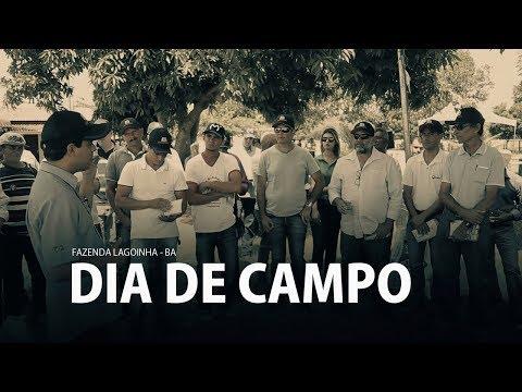 DIA DE CAMPO FAZ LAGOINHA - BA