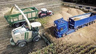 TRUCK SILAGE - V8 Scania 730, V8 580, 490, KRONE BIG X 1100, Steyr 6240, Case IH Puma 225