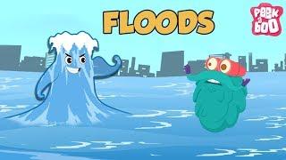 FLOODS - The Dr. Binocs Show | Best Learning Videos For Kids | Peekaboo Kidz