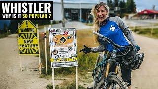 Why Is Whistler MTB Bike Park SO Popular?