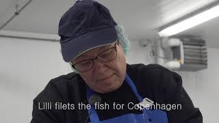 The freshest fish of Copenhagen