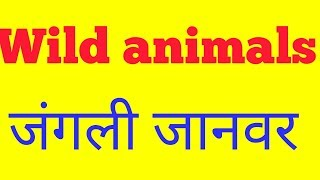 wild animal names in hindi - Free video search site