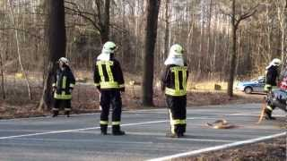 preview picture of video 'Pkw gegen Baum | Feuerwehr Pulsnitz'