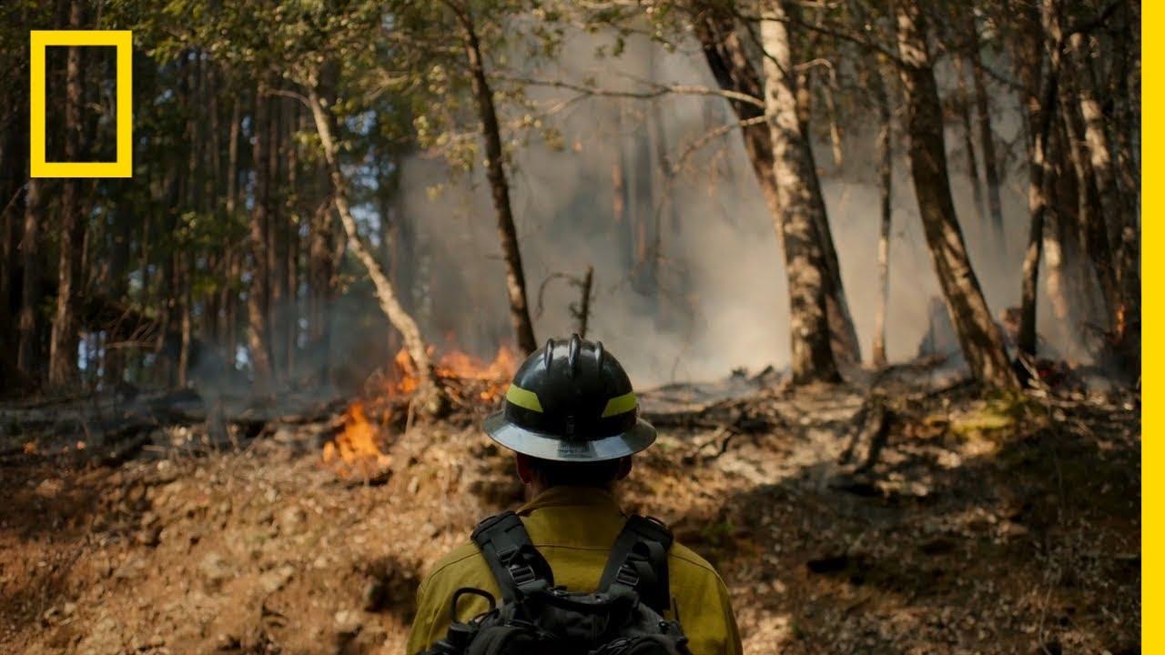 Controlled Bush Fire Burn   Rebuilding Paradise thumbnail