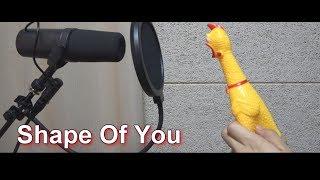 Ed Sheeran - Shape Of You 'Chicken cover'