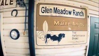 Glen Meadow Farm by Flyral