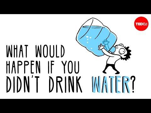 מדוע צריך לשתות מים? סרטון חשוב במיוחד לימי הקיץ החמים