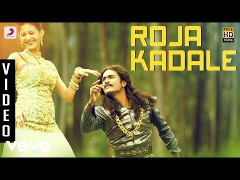 Anegan - Roja Kadale Video | Dhanush | Harris Jayaraj