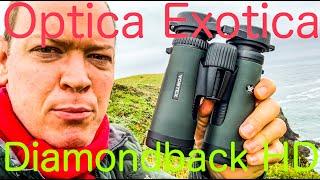 The DEFINITIVE Vortex Diamondback HD Binoculars Field Review #59
