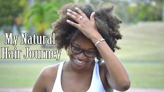 preview picture of video 'My Natural Hair Journey - Shanice Wilson'