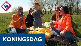 Compilatie: zo vierde de regio Koningsdag 2021 - OMROEP WEST