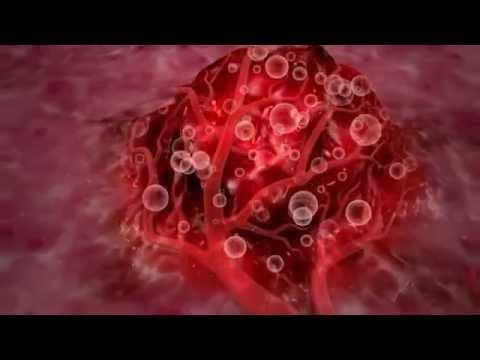 Гепатит в и с отличии