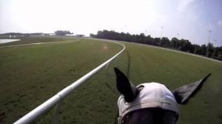 EquiSight Jockey Cam: Christopher Ho at Colonial Downs