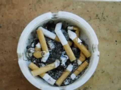 Für welche Zeit man bis zur Konzeption Rauchen aufgeben muss