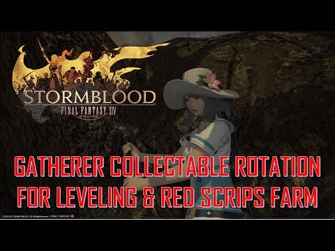 Final Fantasy XIV: Stormblood - Lv.60 to 70 Gatherer Collectable Rotation For EXP & RED Scrips