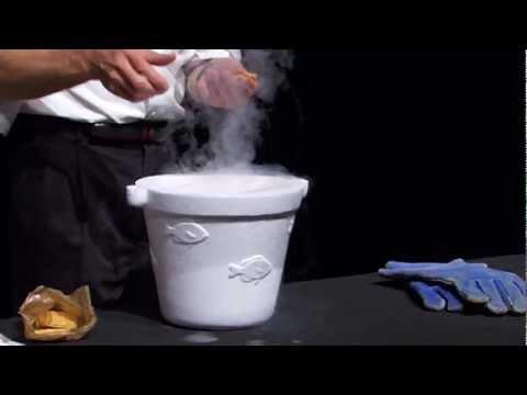 Bill Nye The Science Guy has fun with liquid nitrogen