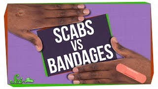 What's Better for Wounds: Scabs or Bandages?