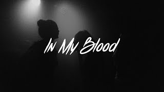 Shawn Mendes   In My Blood Lyrics (Acoustic)