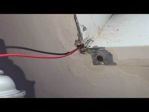 Acrobat Ants Nest in Bathroom Skylight in Holmdel, NJ