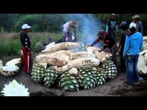 Cooking Maguey for Mezcal  - Mezcal Real Minero, Oaxaca, Mexico