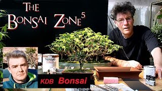 The Bonsai Zone, Questions And Answers And More, Part 4, March 2018