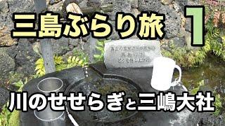 静岡三島ぶらり旅1川のせせらぎと三嶋大社