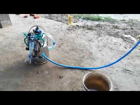Fixed Type Double Bucket Milking Machine