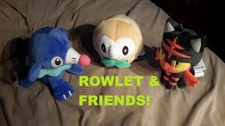 Rowlet  - (Pokémon) - GHOST TYPE?! - Rowlet and Friends!