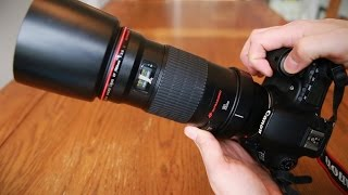 Canon EF 180mm f/3.5 Macro USM 'L' lens review with samples (Full-frame and APS-C)