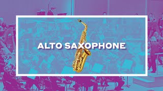 The Alto Saxophone