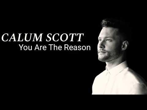 you are the reason lyrics